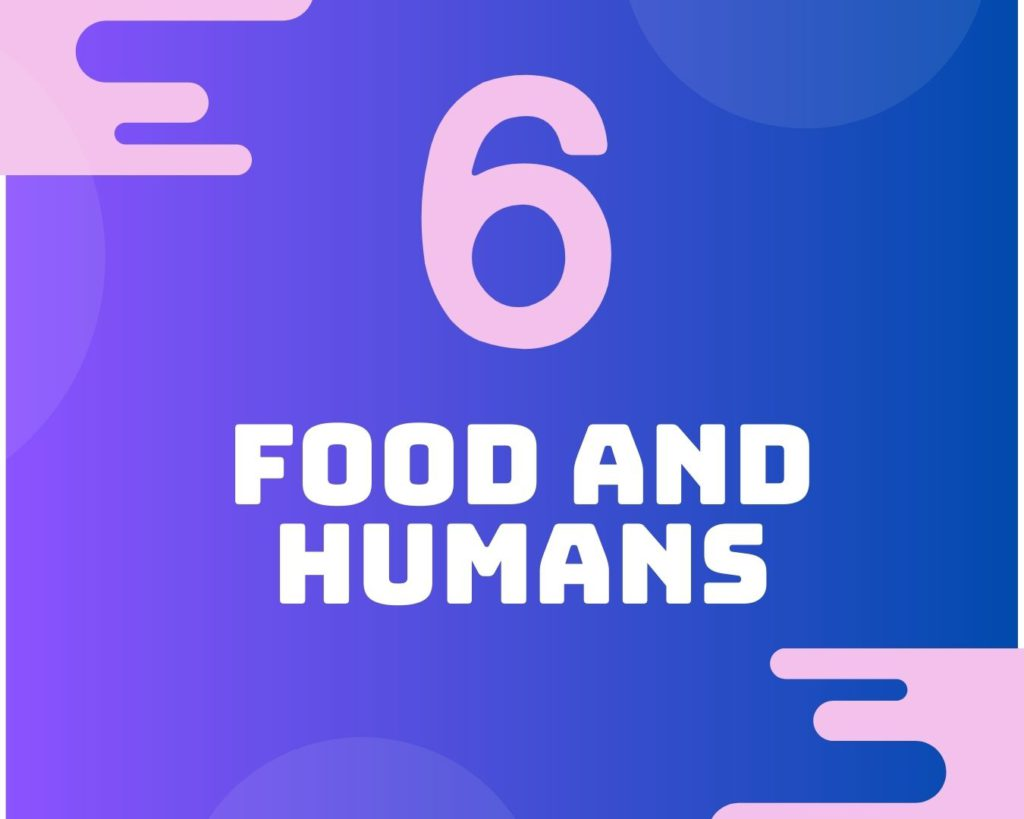 6 Food and humans
